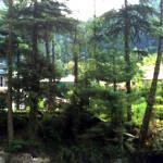 kasolstay home