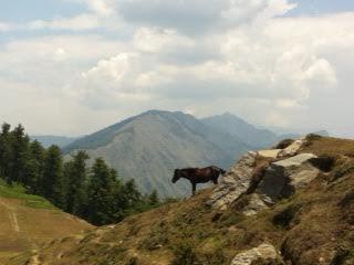 hills, Kasol, Himachal